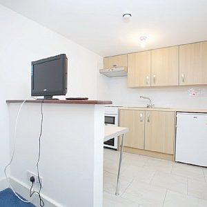 Belsize Park - Gallery Duplex Apartment -23815